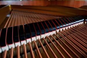 Étouffoirs du piano à queue positionnés sur les cordes basses.