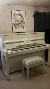 Piano FEURICH 115